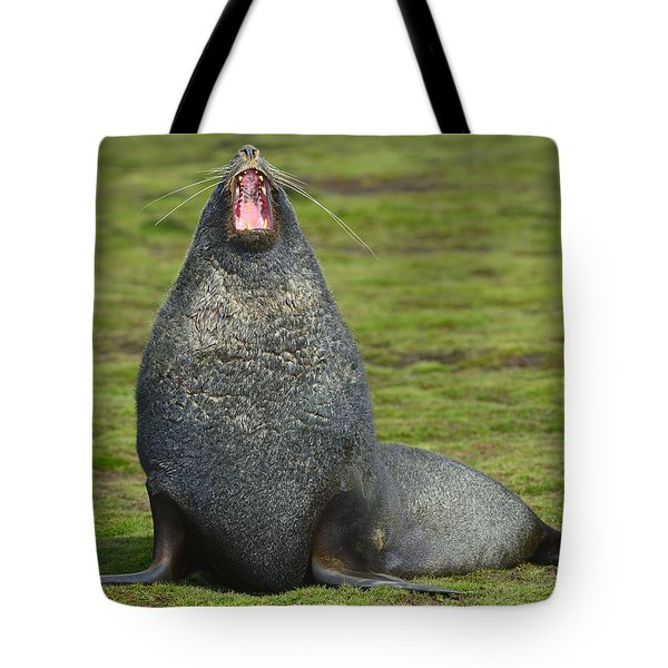 Warning Growl Tote Bag by Tony Beck