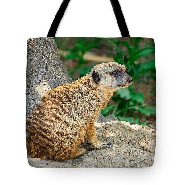 Watchful Meerkat Vertical Tote Bag by Jon Woodhams