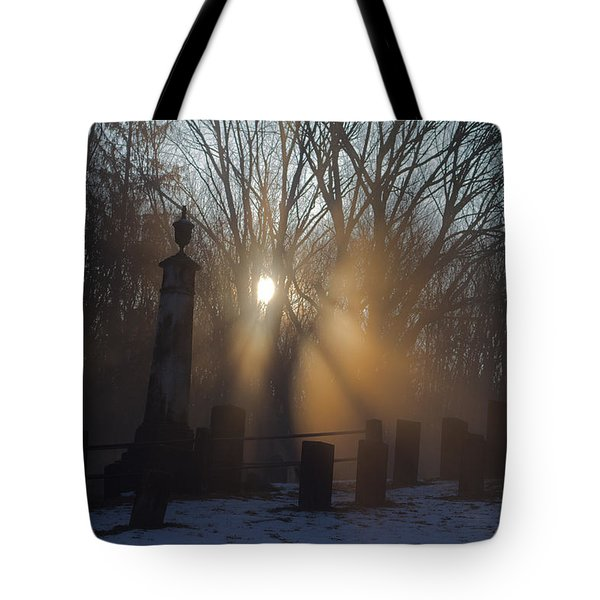 Watching Over Tote Bag by Karol Livote