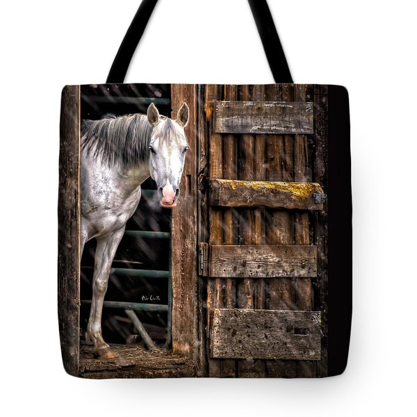 Watching the snow fall Tote Bag by Bob Orsillo