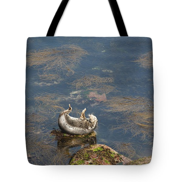 Watching You Watching Me Tote Bag by Anne Gilbert