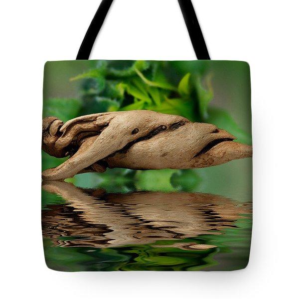 Water Balance Tote Bag by WB Johnston