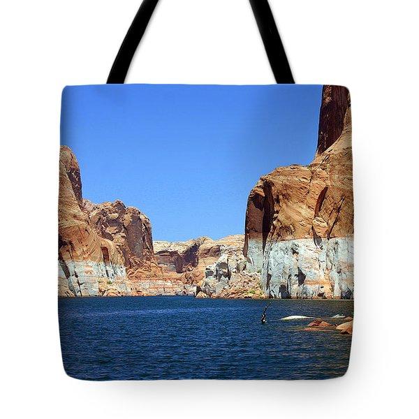 Water Canyons Tote Bag by Bob Hislop
