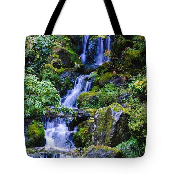 Water Fall Tote Bag by Dennis Reagan