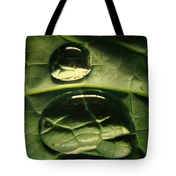Water Life Tote Bag by Diannah Lynch