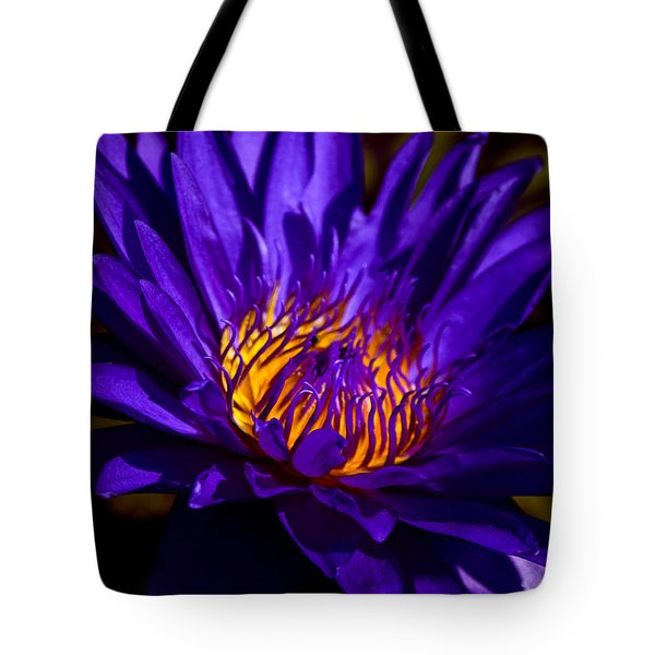Water Lily 7 Tote Bag by Julie Palencia