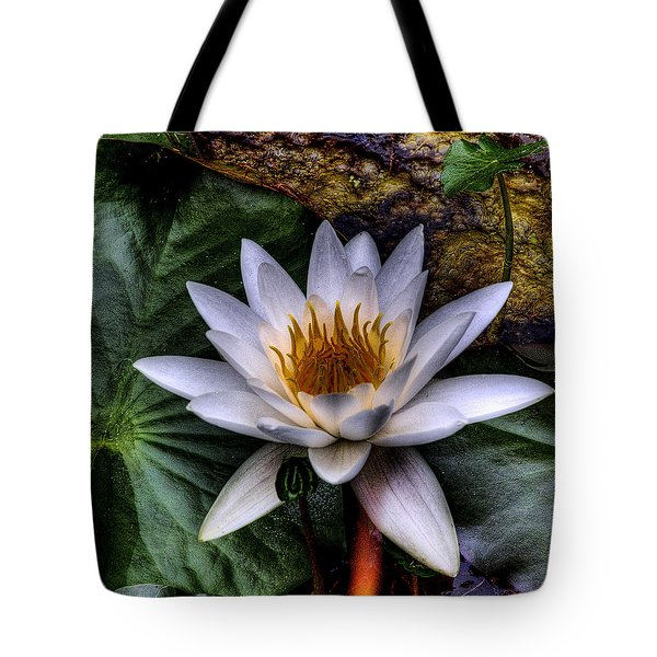 Water Lily Tote Bag by David Patterson