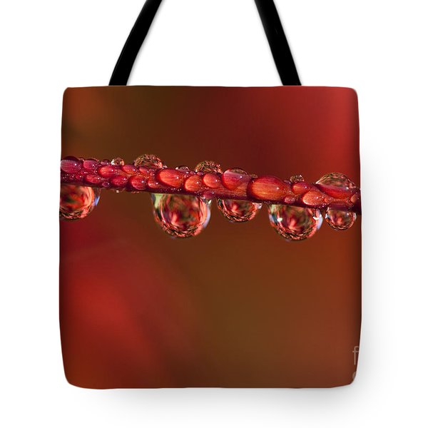 Water Line Tote Bag by Anne Gilbert