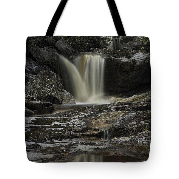 Waterfall Reflection On Big Run River  Tote Bag by Dan Friend