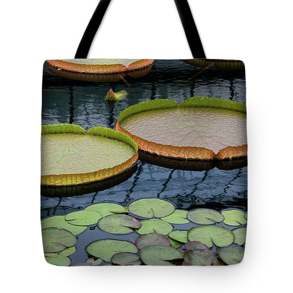 Waterlilies and Platters 2 Tote Bag by Byron Varvarigos