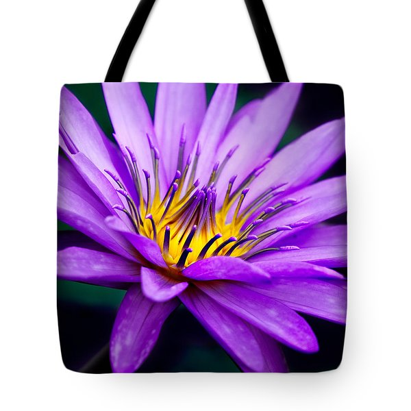 Waterlily #23 Tote Bag by Chris Lord