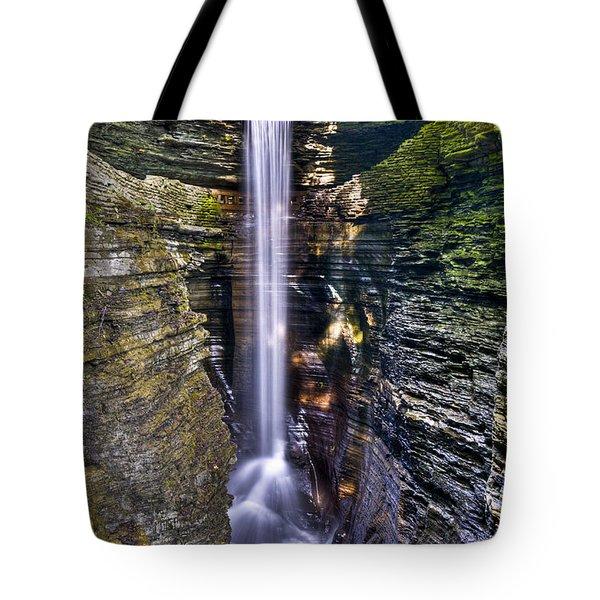Watkins Glen Cascade Tote Bag by Anthony Sacco