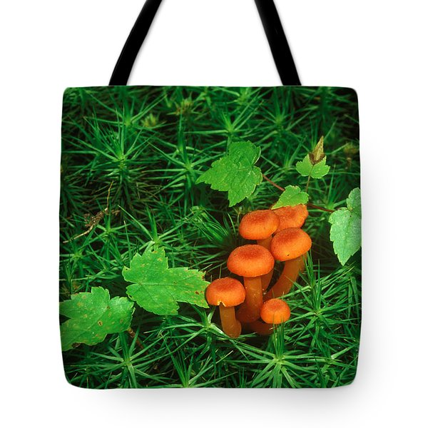 Wax Cap Fungi Tote Bag by Jeff Lepore