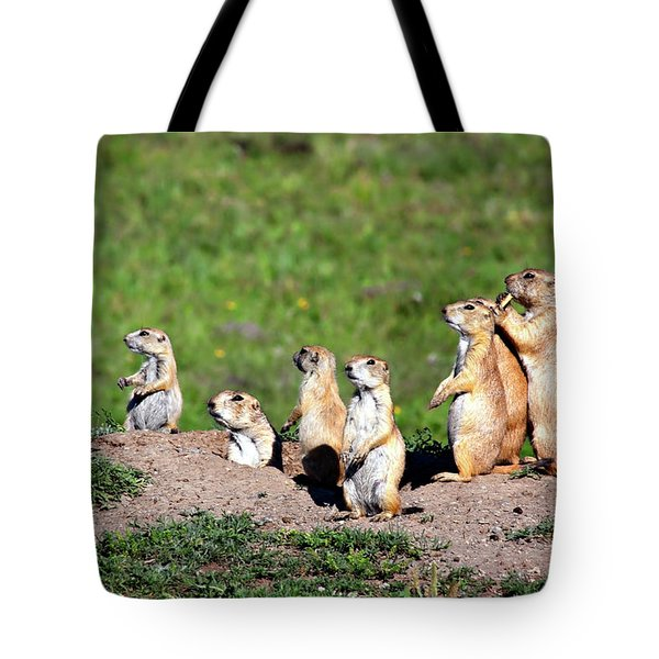 We Are Family Tote Bag by Lana Trussell