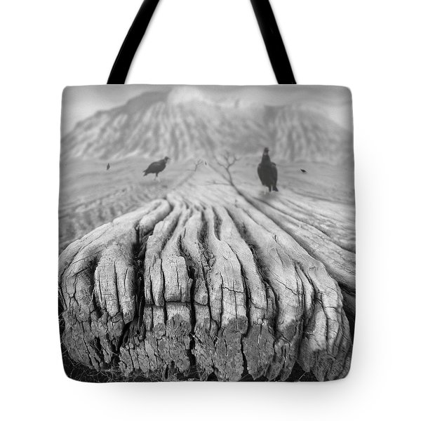 Weathered 3 Tote Bag by Mike McGlothlen