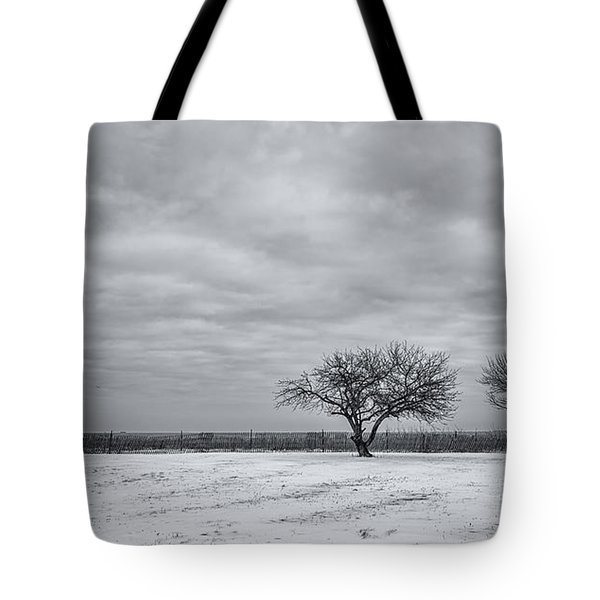 Weeping Souls Of Winter Desires Tote Bag by Evelina Kremsdorf