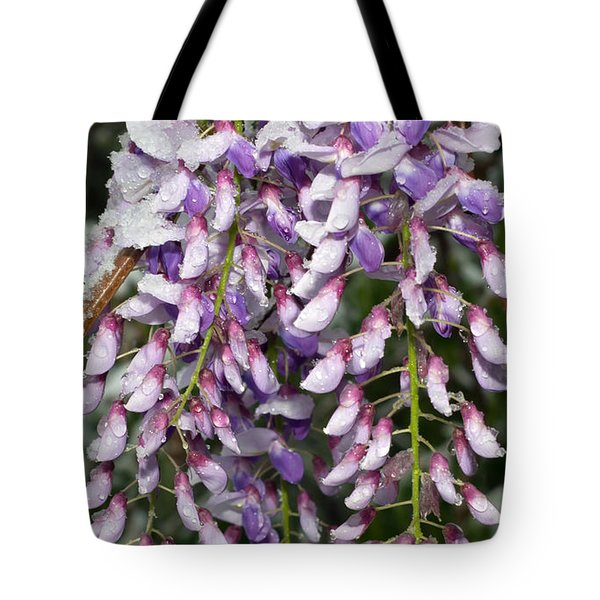 Weeping Wisteria - Spring Snow - Ice - Lavender - Flora Tote Bag by Andee Design