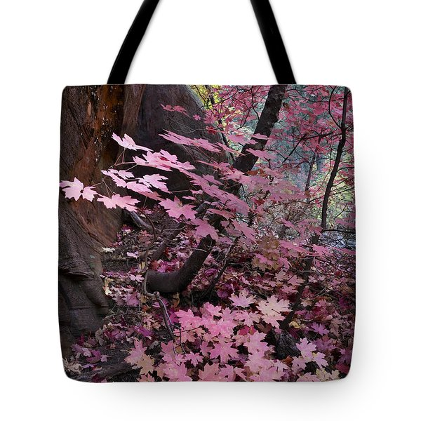 West Fork Fall Colors Tote Bag by Dave Dilli