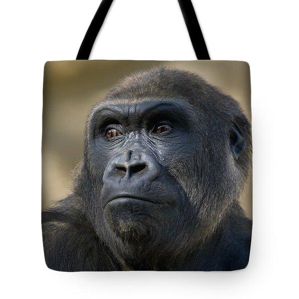 Western Lowland Gorilla Portrait Tote Bag by San Diego Zoo