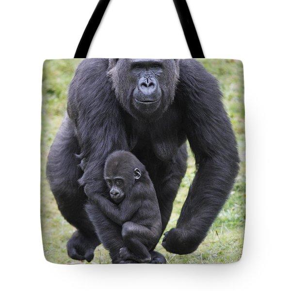 Western Lowland Gorilla Walking Tote Bag by Duncan Usher