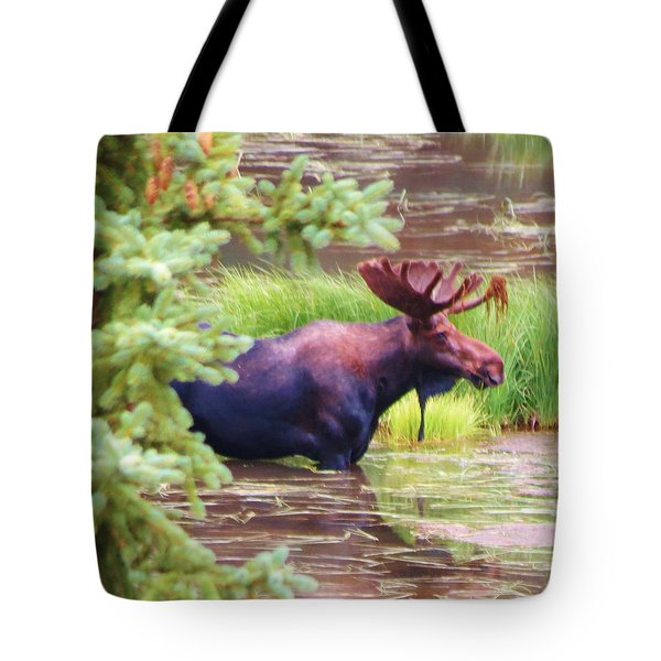 Wet And Wild Tote Bag by Feva  Fotos