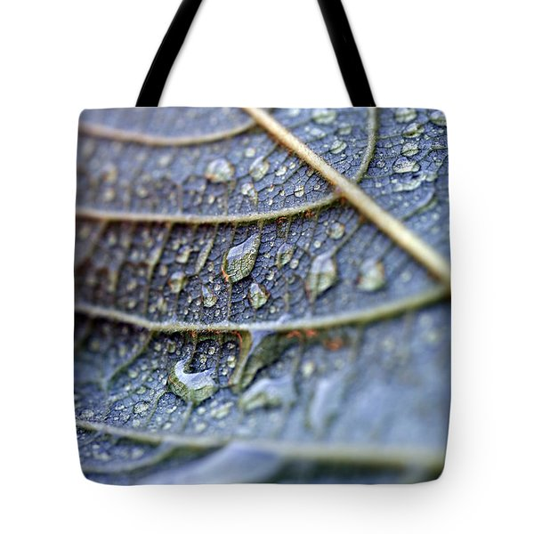 Wet Leaf Tote Bag by Frank Tschakert