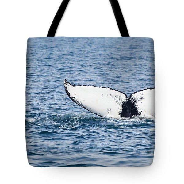 Whale Tail Stellwagen Bank Tote Bag by Michelle Wiarda