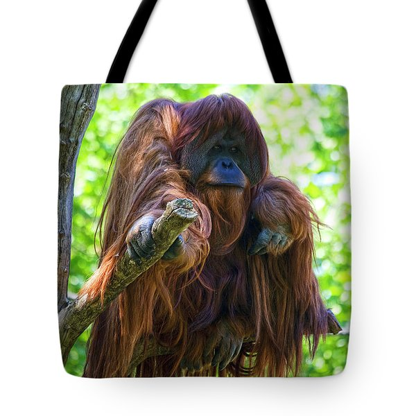 What's Up Tote Bag by Heiko Koehrer-Wagner