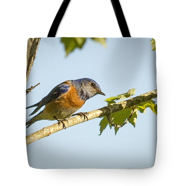 Whats Up Tote Bag by Jean Noren