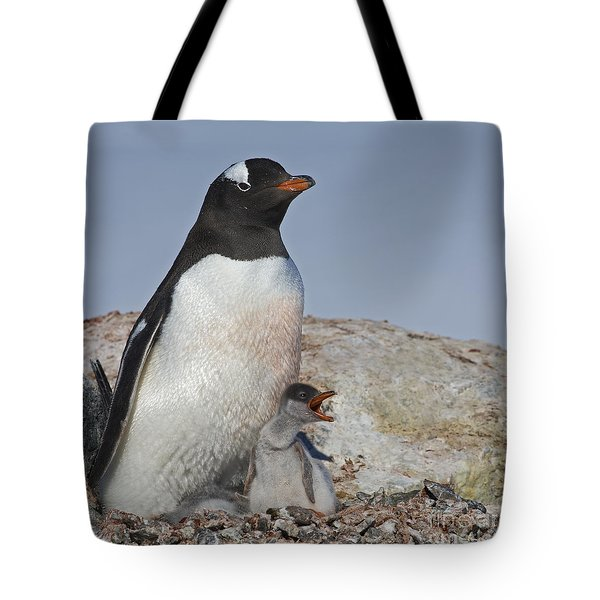Where is my Krill... Tote Bag by Nina Stavlund