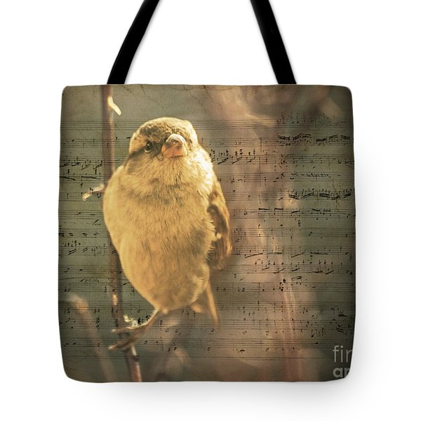 Whistling Song Sparrow Tote Bag by Janice Rae Pariza