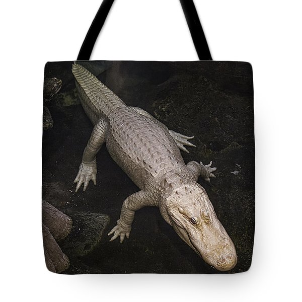 White Alligator Tote Bag by Garry Gay