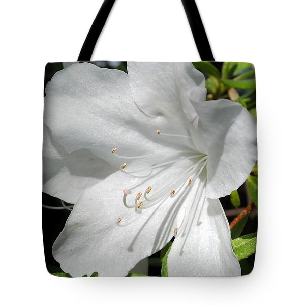 White Azalea Tote Bag by Kelly Nowak