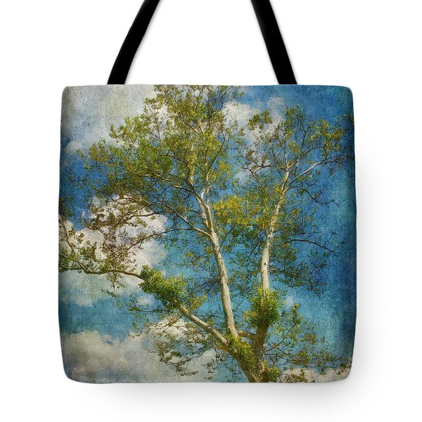 White Birch In May Tote Bag by Lois Bryan