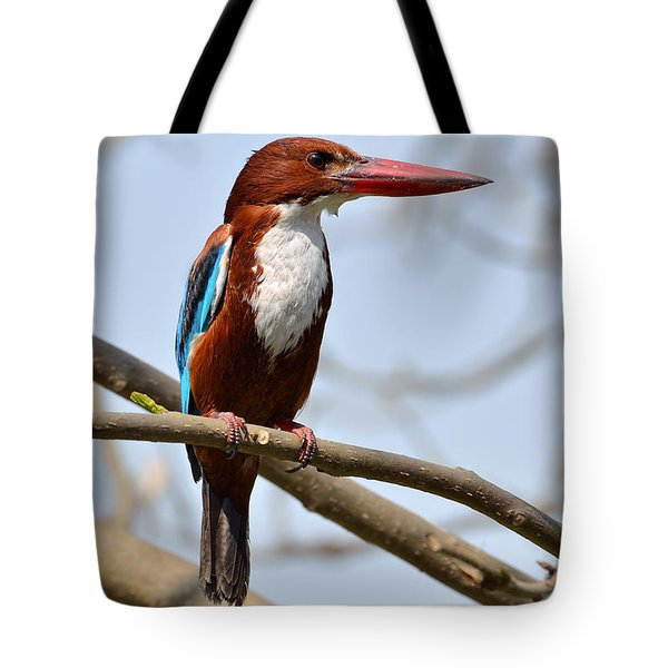 White Breasted Kingfisher Tote Bag by Fotosas Photography