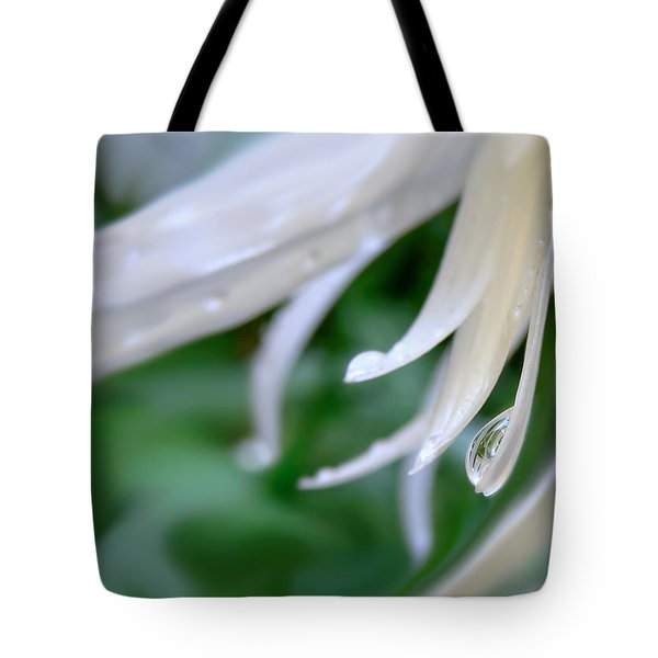 White Daisy Petals Raindrops Tote Bag by Jennie Marie Schell