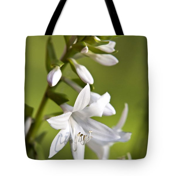 White Hosta Flower Tote Bag by Christina Rollo