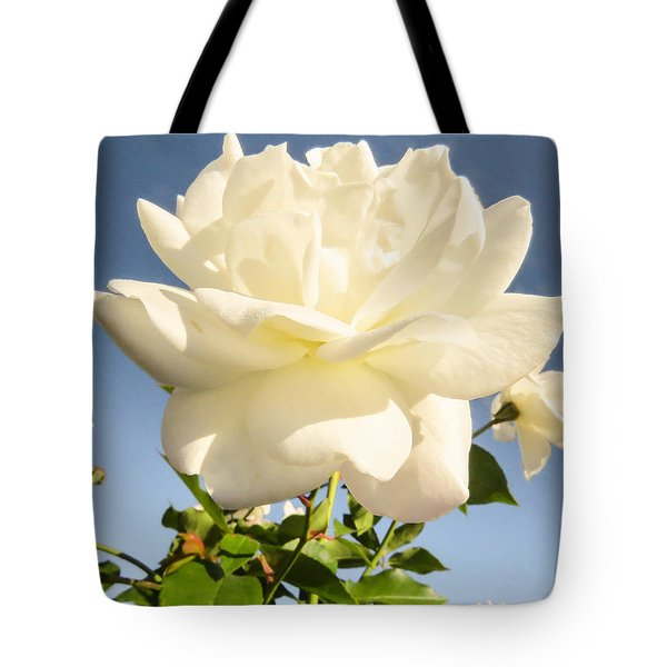 White On Blue Tote Bag by Zina Stromberg