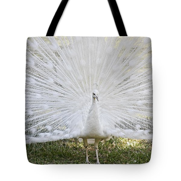 White Peacock - Fountain Of Youth Tote Bag by Christine Till