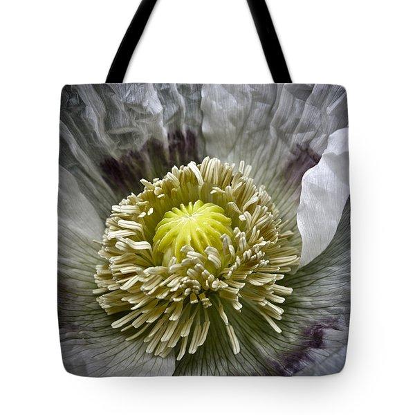 White Poppy Tote Bag by Frank Tschakert