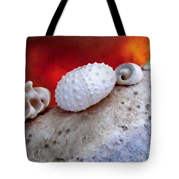 White Seashells And Purple Conch  Tote Bag by Danielle  Parent