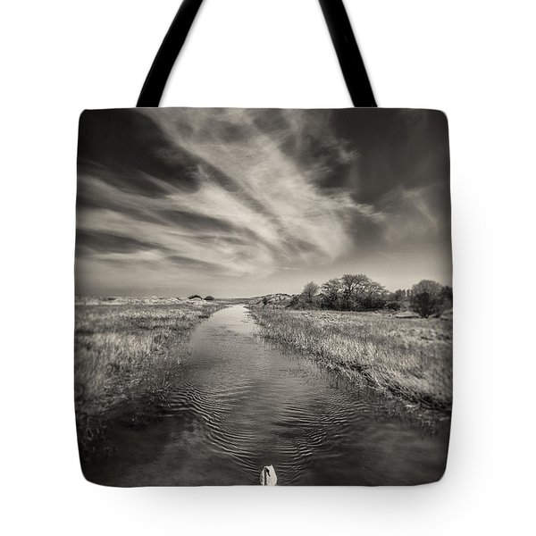 White Swan Tote Bag by Dave Bowman