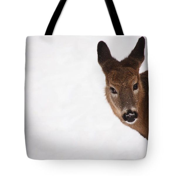 White Tail Babe Tote Bag by Karol Livote