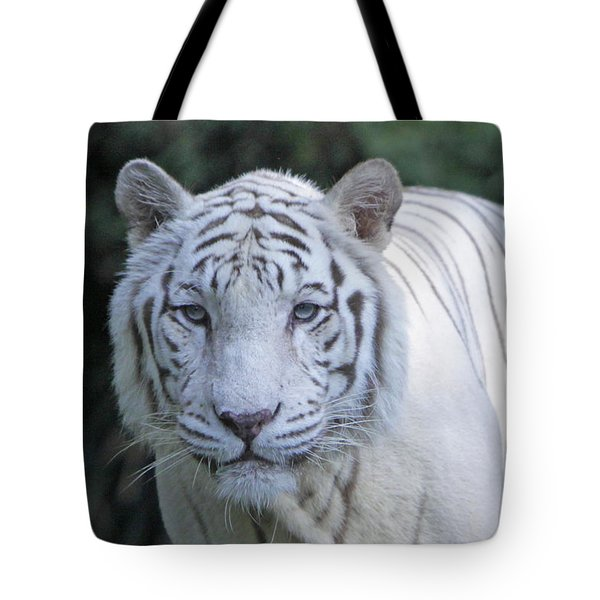 White Tiger Face Tote Bag by Shoal Hollingsworth
