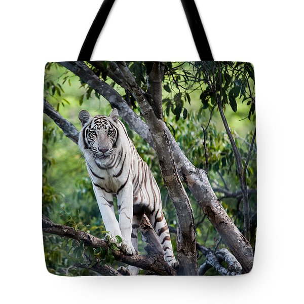 White Tiger On The Tree Tote Bag by Jenny Rainbow