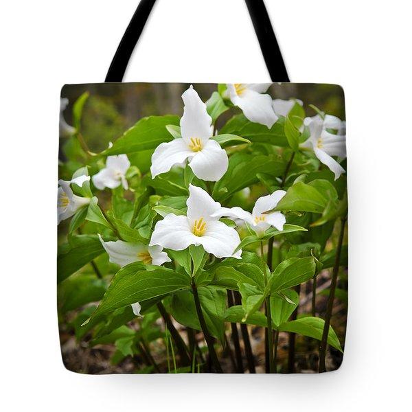 White Trillium Tote Bag by Elena Elisseeva