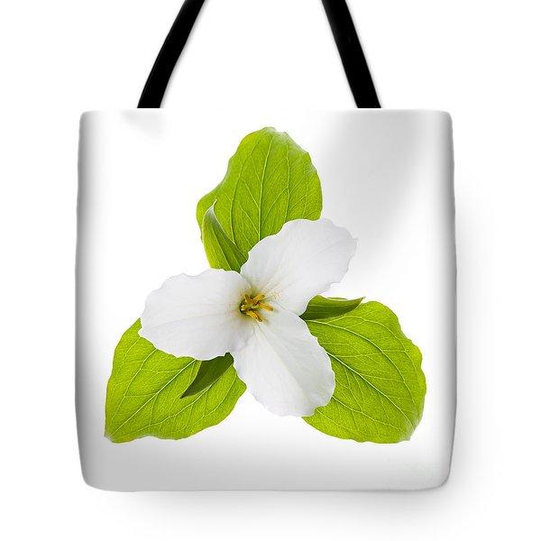 White Trillium flower  Tote Bag by Elena Elisseeva