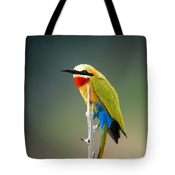 Whitefronted Bee-eater Tote Bag by Johan Swanepoel