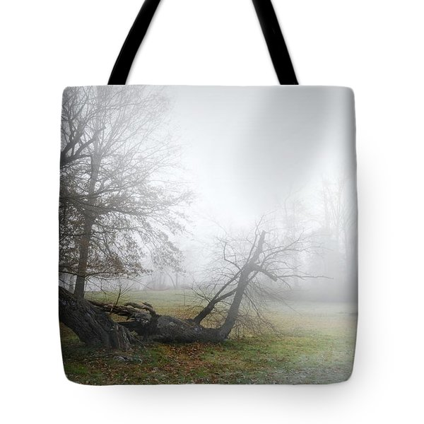 Who's Sorry Now Tote Bag by Diana Angstadt