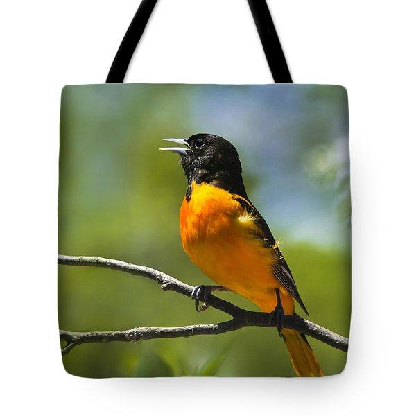 Wild Birds - Baltimore Oriole Tote Bag by Christina Rollo